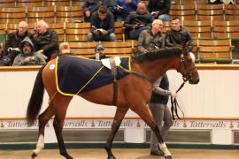 Lot  275 T G B3322 Tattersalls