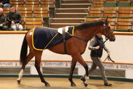 Lot  275 T G B3352 Tattersalls