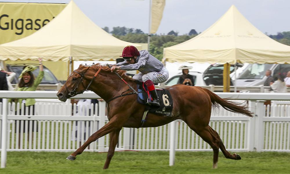 Galileo Gold Winning the G1 St James' Palace Stakes